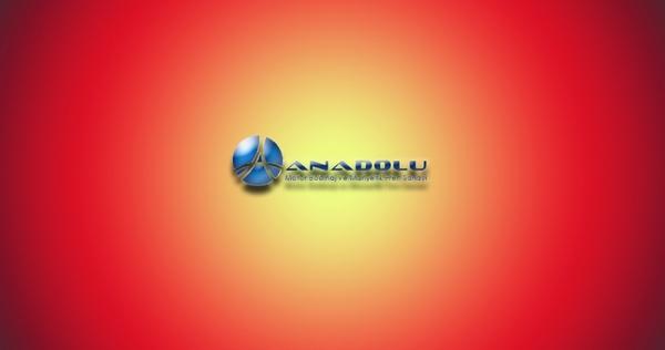 Anadolu Manyetik Fren